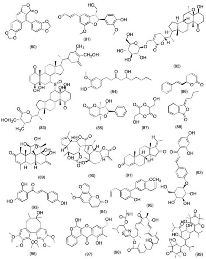 Structure of molecules with potent COX-2 and PGE2 inhibitory activity